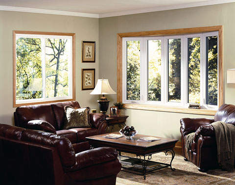 Amerimax Casement 5 Lite Windows